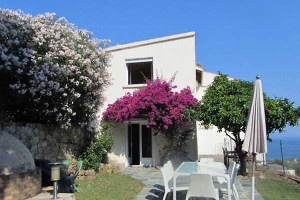 Villa Olivier **** in Ile Rousse - Bild 1