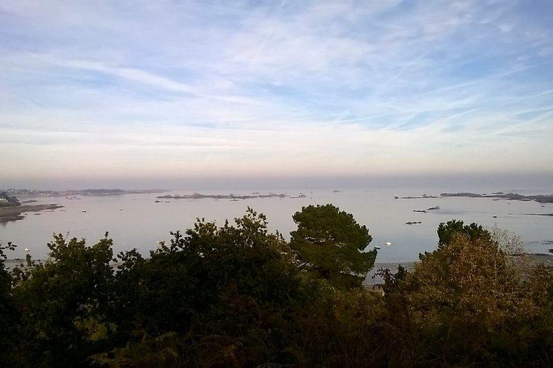 Die Landschaft ... 100 m vom Haus ...