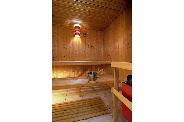 luxus reihenhaus r4 eigene sauna ferienhaus in st. Black Bedroom Furniture Sets. Home Design Ideas