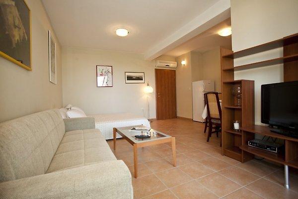 Wohnung Adrian in Krvavica - Bild 1