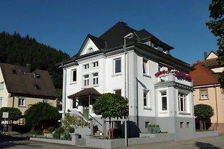 Appartement à Wolfach