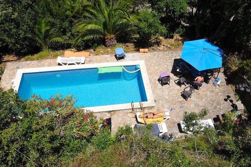 Pool inmitten der Natur