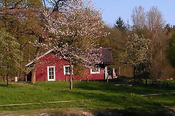 Ferienhäuser in Waldhütten en Aukrug - imágen 1