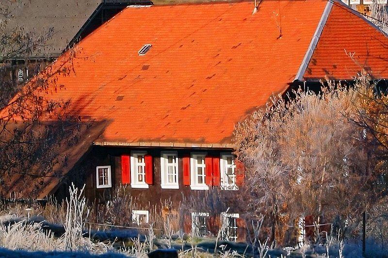 das Schwarzwaldbauernhaus
