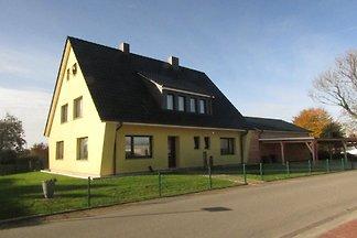 Witt, Bülow