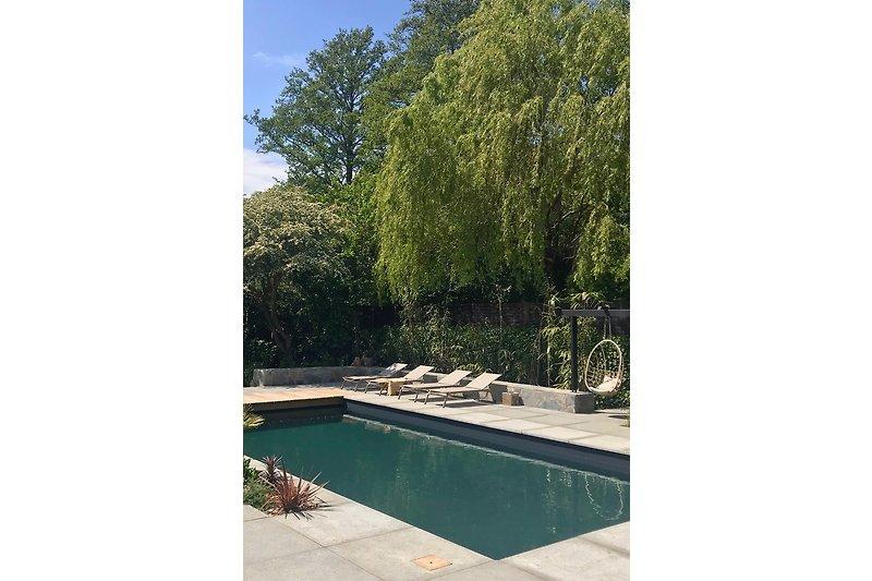 Schwimmbad Villa Flagstone
