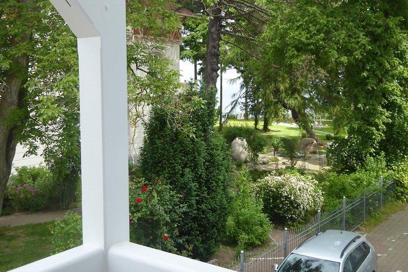 Blick vom Balkon auf die Ostsee ( hinter den Bäumen-mehr davon in der Wintersaison)