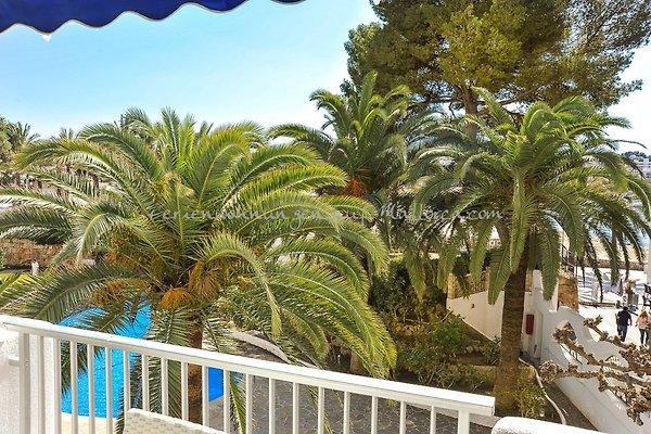 2614 Apartamento en Santa Ponsa en Santa Ponsa - imágen 1