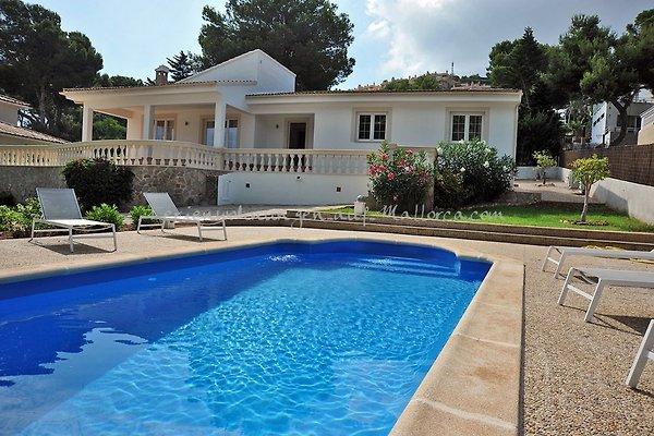 Villa 2707 Santa Ponsa Nova à Santa Ponsa - Image 1
