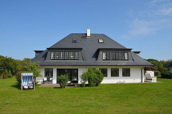 Litzkow 16005 in Archsum - Bild 1
