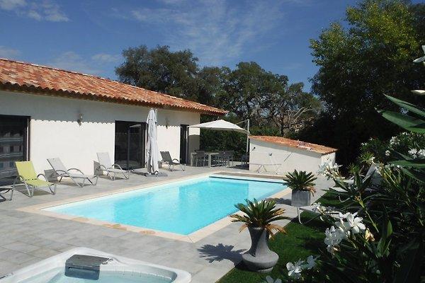 Villa mit beheiztem Pool und Jacuzi in Porto Vecchio - Bild 1