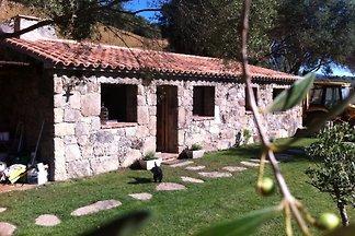 Porto Vecchio Korsica still Hause