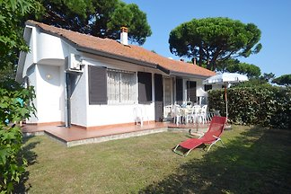 Holiday home relaxing holiday Lido delle Nazioni