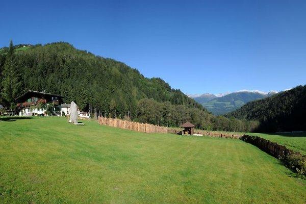 Forest View per le vacanze Dolomiti in St. Lorenzen - immagine 1