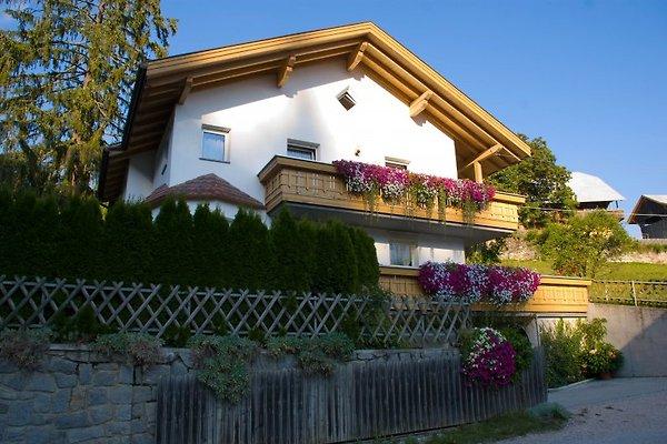 Haus Alte Mühle Wohnungen in Pfalzen - Bild 1