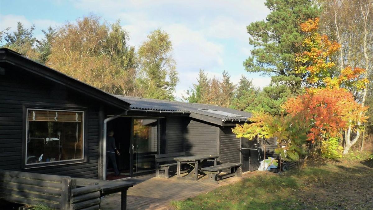 haus am fjord ferienhaus in tarm mieten. Black Bedroom Furniture Sets. Home Design Ideas