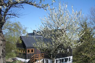 Holiday flat in Rechenberg-Bienenmühle