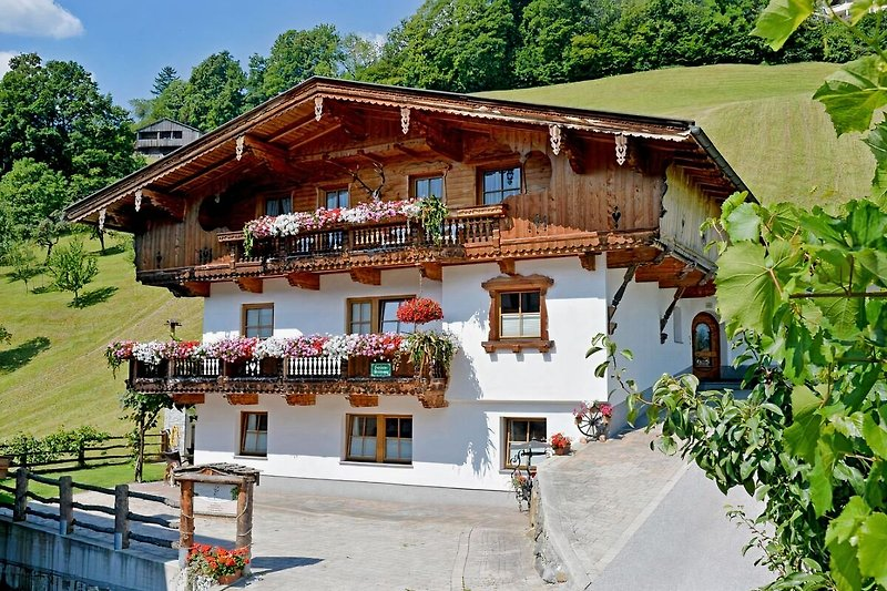 Ferienhaus Waidmannsruh  - Sommer 2014