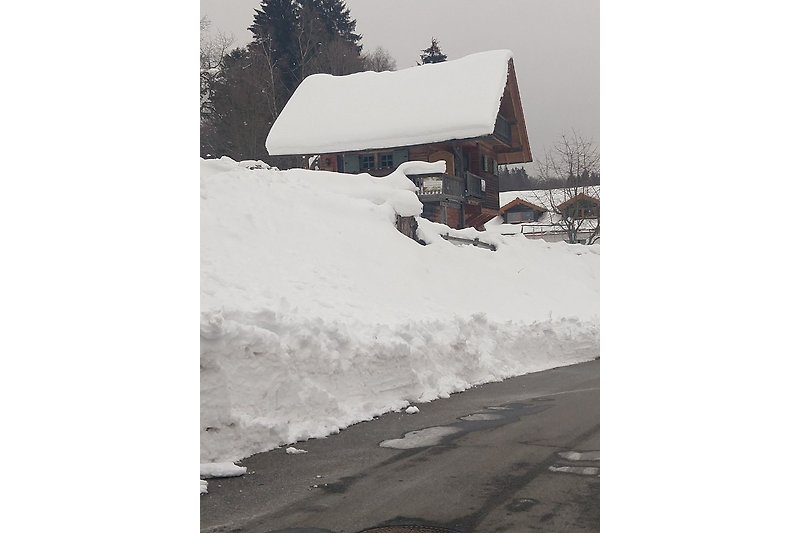 Guglöd im Winter