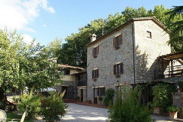 Die Poggiolo Parrano (Orvieto) in Parrano - Bild 1