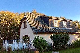 Doppelhaushälfte in Dierhagen-Ost