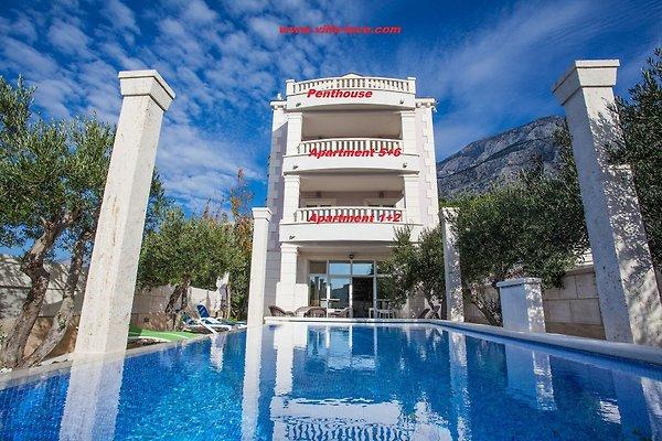 Villa Luce mit privatem Pool in Makarska - Bild 1