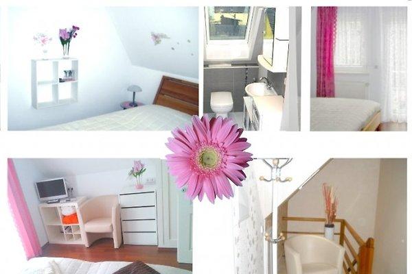 ferienwohnung koblenz rhein mosel ferienwohnung in koblenz mieten. Black Bedroom Furniture Sets. Home Design Ideas