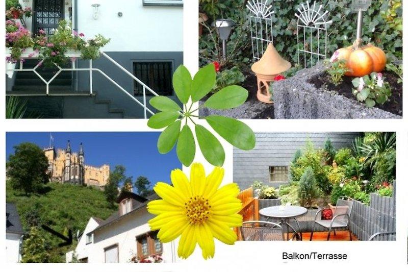 Terrasse, Zugang, Lage