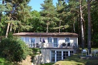 Waldsiedlung Waldhaus App 2.1