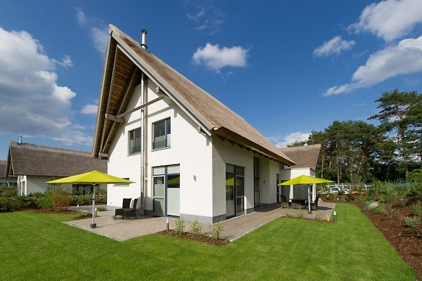 Holiday home in Karlshagen - picture 1