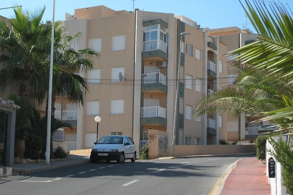 vacanze Leandros in Torrevieja - immagine 1