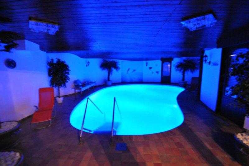 Pool mit Beleuchtung und Gegenstromanlage