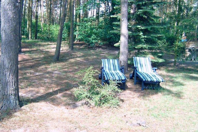 Sonnenbaden im Naturschutzgebiet
