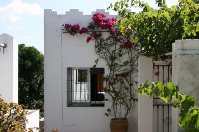 Casa Parra
