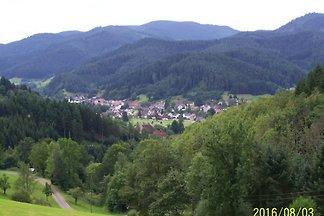 Vakantie-appartement in Gutach