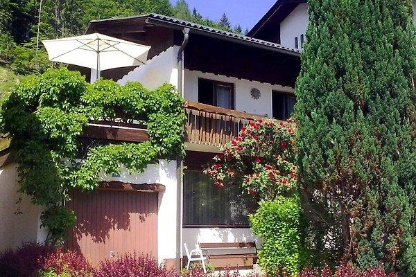 2-Etagen-Wohnung mit Terrasse