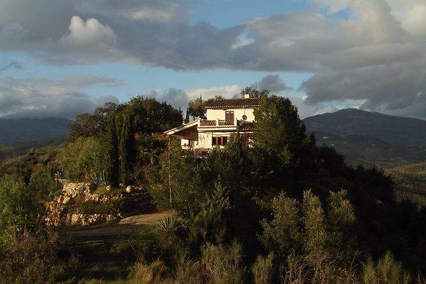 Monte de los Frailes à Cutar - Image 1