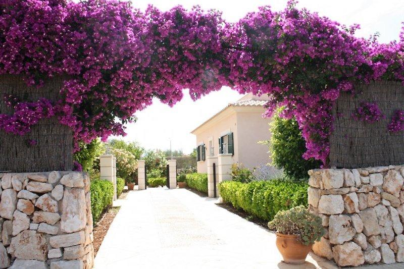 Casa Olivo, ruhige Lage, nur ca 3 Km vom Strand Sa Rápita-Es Trenc