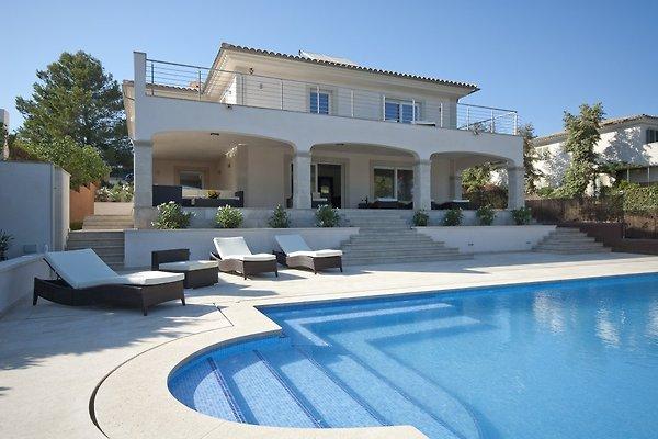 Traumhaus am strand  Traumhaus am Meer und Strand - Ferienhaus in Cala Mandia mieten