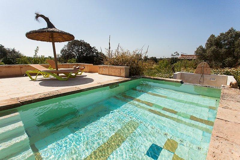 der Pool mit Sonnendeck!
