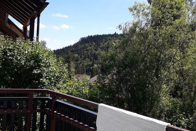 Terrasse Mai 2020, Blick ins Tal