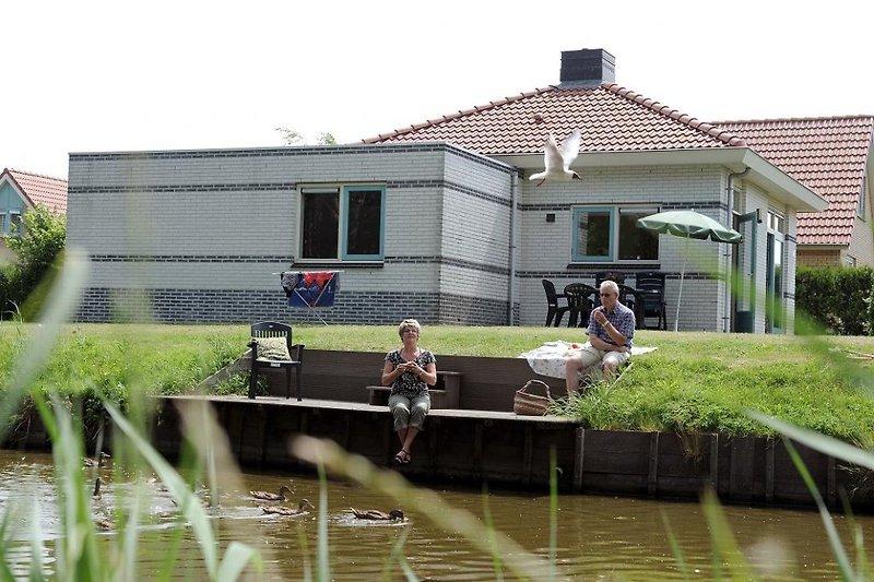 Type Hoorn 6 am Wasser