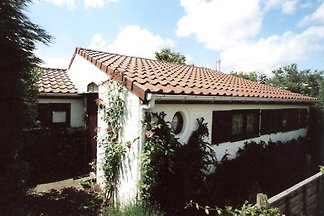 Gemütliches Ferienhaus 800M Strand