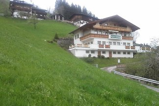 Holiday flat in Aschau im Zillertal