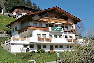 Holiday flat family holiday Aschau im Zillertal