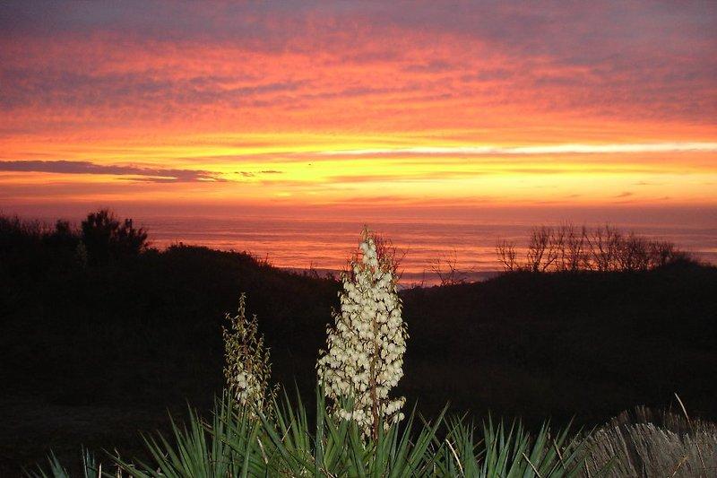 Sonneuntergang Blik uber der Atlantik von der Terrase