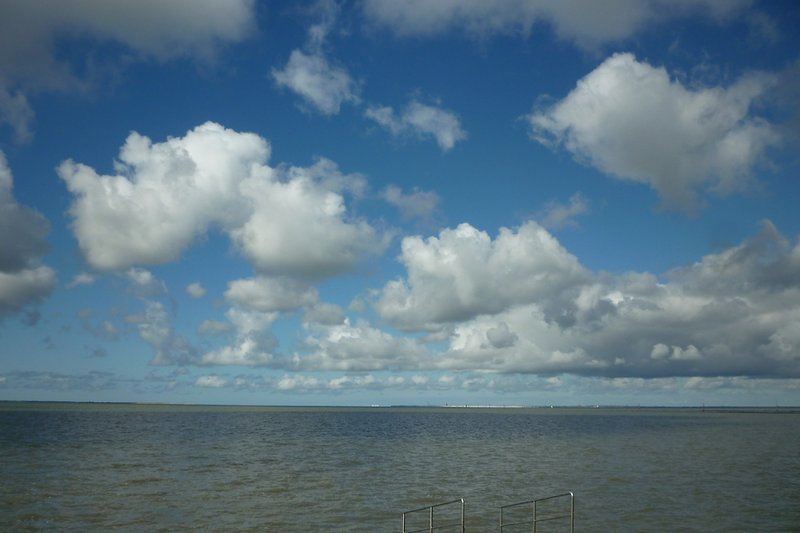 Nordsee pur