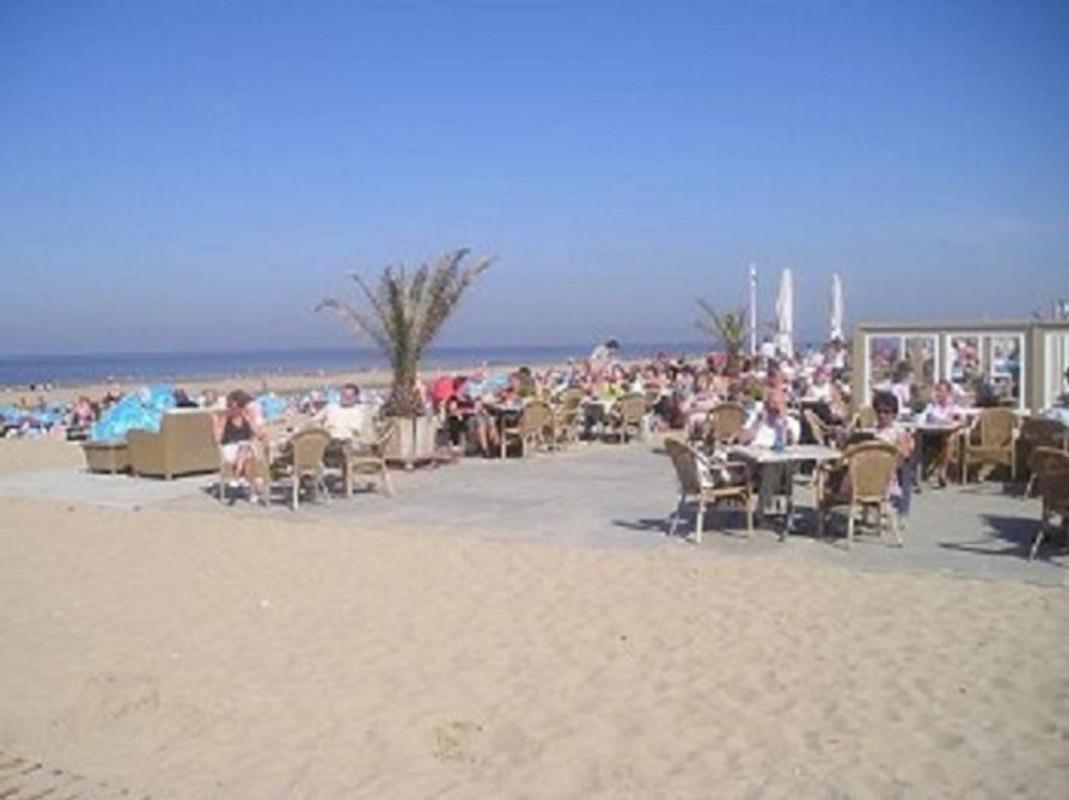 Ferienwohnung terrasse zandvoort ferienwohnung in for Zimmer zandvoort