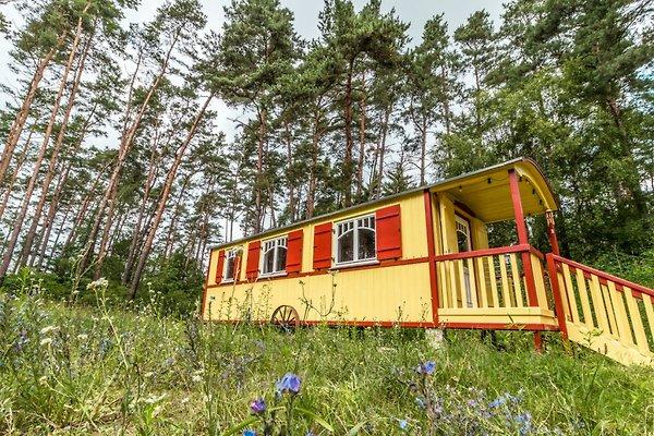 zirkuswagen zigappo ferienhaus in lychen mieten. Black Bedroom Furniture Sets. Home Design Ideas