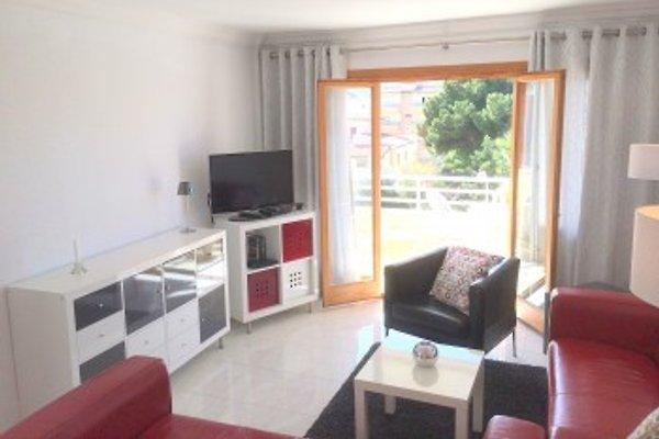GITTI Wohnung für 6 Pers. in Cala Ratjada - Bild 1